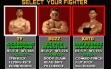 logo Emulators PIT-FIGHTER [ST]